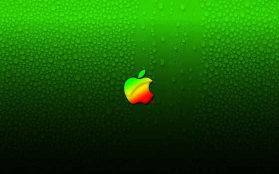 apple на зелёном мокром фоне