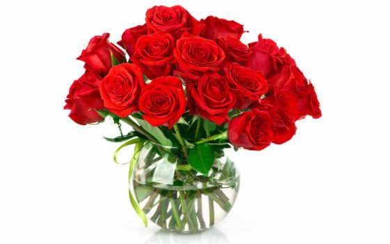 рождения, букет, днем, день, цветов, букеты, вас, розы, цветы, алматы,