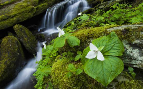 assurances, water, водопад, areas, perpignan,