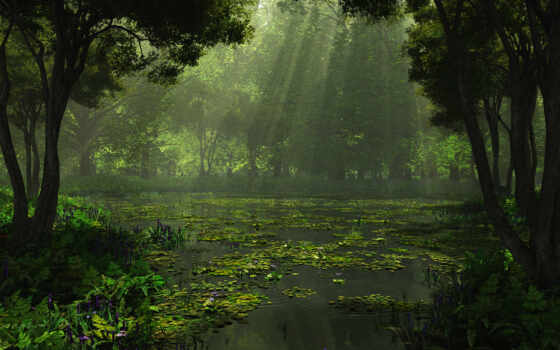 озеро, лес, природа, красивый, rendering, swamp, trees