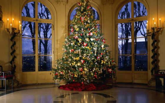 новогодняя, дерево, new, год, украшенная,