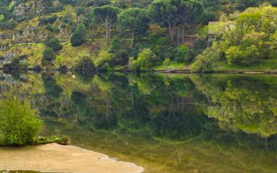 summer, природа, trees, река, природы, остров, зелёный, lodge, косичка,