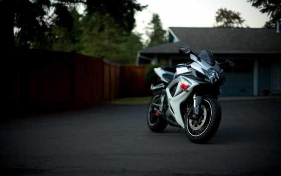 мотоцикл, suzuki, gsx, мотоциклы, спорт, white, bike,