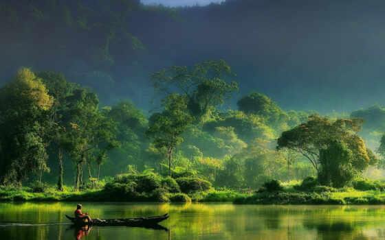 природа, picturesque, landscape, цитата, life, лес, love, inspiration, красивый, афоризм, неземной