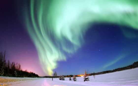 сияние, северное, сияния, полярное, ученые, медведь, white,