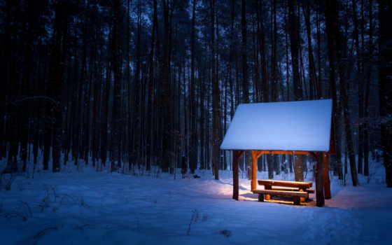 winter, уже, загружено, лучшая, страница, коллекция,