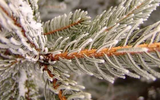winter, zima, зимний, так, inverno, hiver, загрузить, синий, коллекция, makryi, отзыв