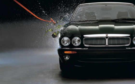 jaguar, красивых, подборка
