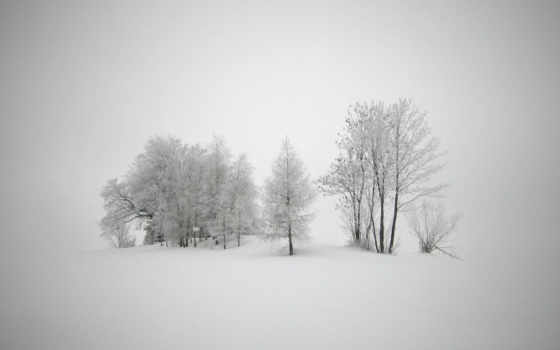 winter, природа, снег Фон № 56922 разрешение 1920x1080