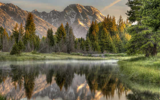 горы, eli, лес