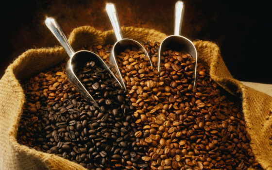coffee, зерна, история, цена, зерен, кофейных, мамочка, обжарка, обжарки,
