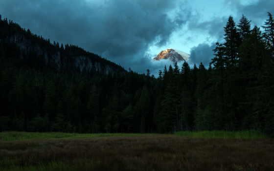 лес, гора Фон № 22509 разрешение 2560x1600