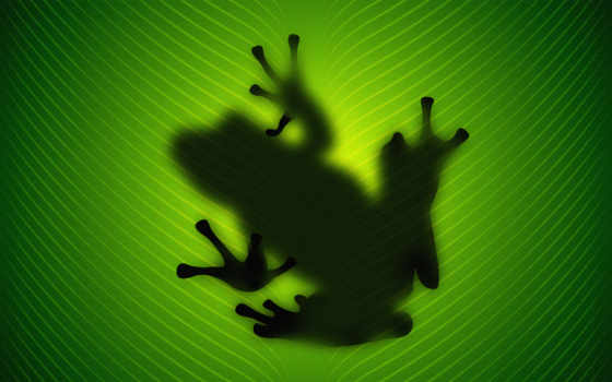 зелёный, лист, силуэт, лягушка, лягушки, сквозь, просвечивает, природа,