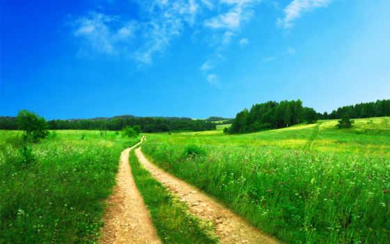 landscape, красивый, удивительно