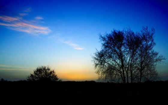 nos, amor, pode, nada, cristo, separar, deus, que, pensamento, diário,