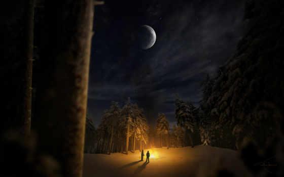 лес, ночь, winter Фон № 124973 разрешение 1920x1200