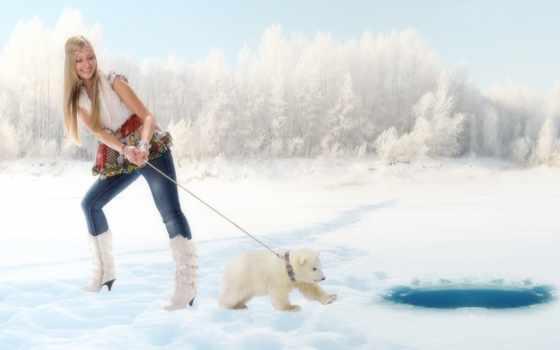 bears, winter, animals