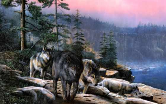волки, волк, волков, волка, ни,