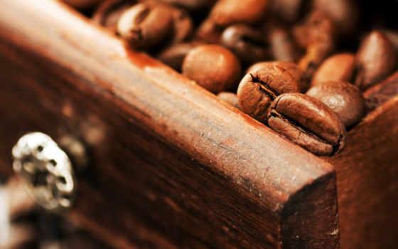 coffee, зерна, cup, еда, напитки, картинка, макро, пенка,