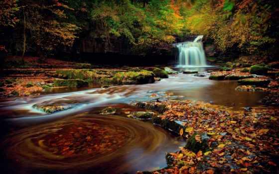 англия, northern, йоркширский, водопад, лес, осень, iphone, листва,