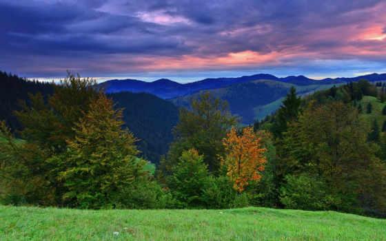 montañas, paisaje, imagen, imágenes, para, pantalla, rboles, paisajes,