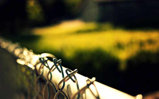 макро, забор, winter, боке, размытость, природа, сеточка,