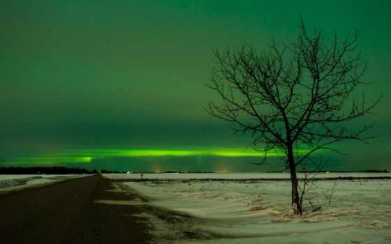 aurora, winter, аляска, borealis, огни, northern, landscape, artic, outdoors,