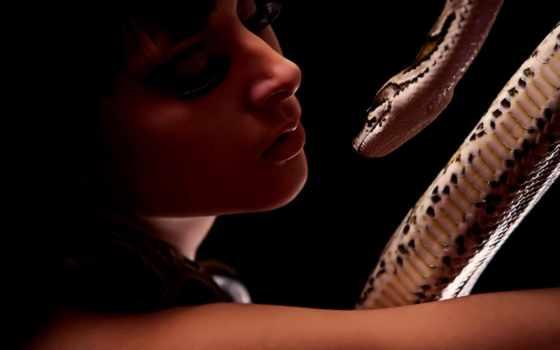 девушка, со, змеей, змея, шоу,
