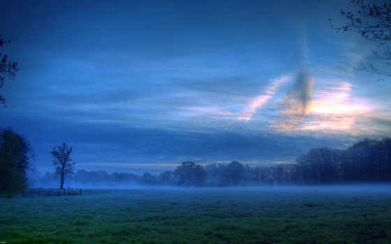 поле, красивые, вечер, газоны, margin, береза, пейзажи -, утреннее, банка, природа,