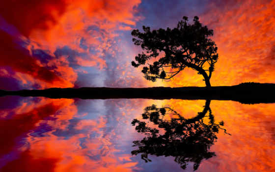 отражение, пейзажи -, water, рассвет, взгляд, landscape, trees, красивые, landscapes, небо,