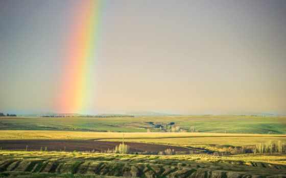 природа, красавица, margin, небо, summer, заставок, заставки, поле,