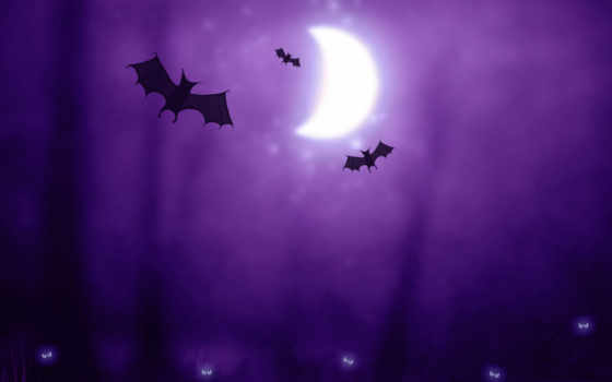 halloween, луна, летучие