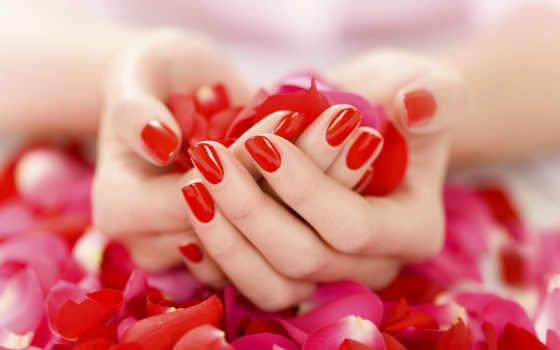 red, маникюр, лепестки, лак, руки, нежно,