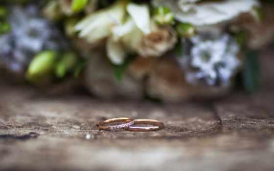 свадебный, кольца, макро, букет, обручальные,