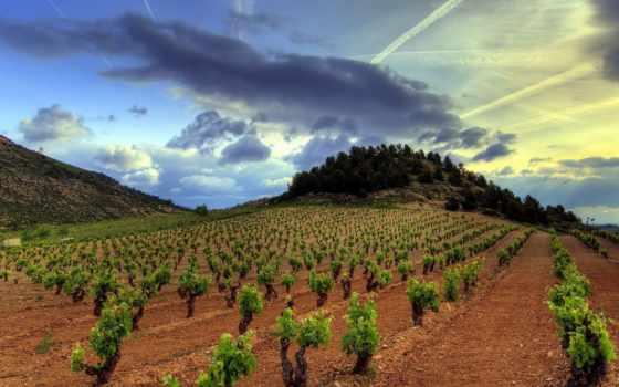испании, почвы, риоха, испания, туры, region, гастрономически, севере,