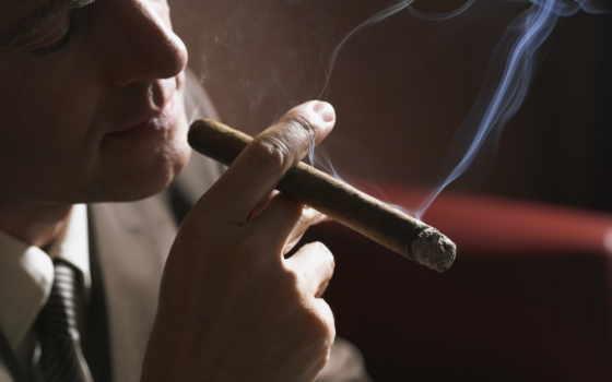 сигару, мужчина, курит