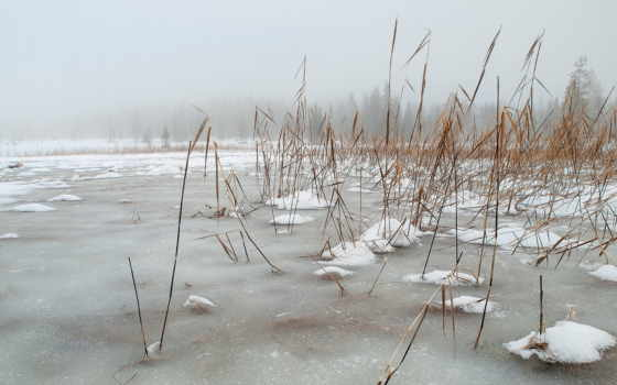 природа, значок, озеро