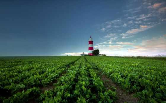поле, природа, рассвет, закат, lighthouse, то, интернет, магазин, большой, фотообои, купить