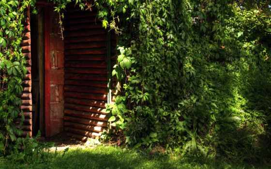 обои, дом, фото, обоев, двери, природа, разделе, з