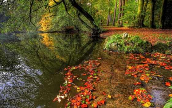 осень, красивые, заставки