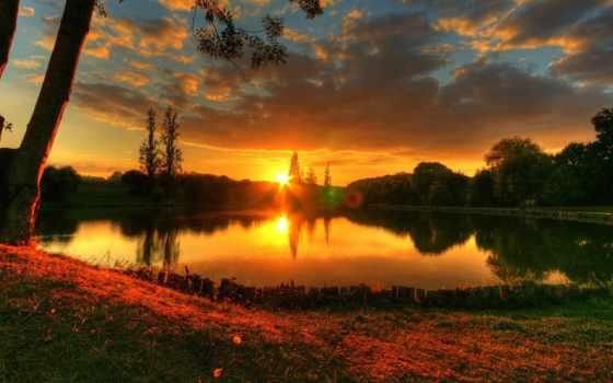 summer, природа, trees, озеро, закат,