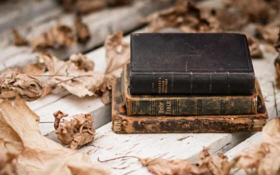 книга, лист, йога, working, старый