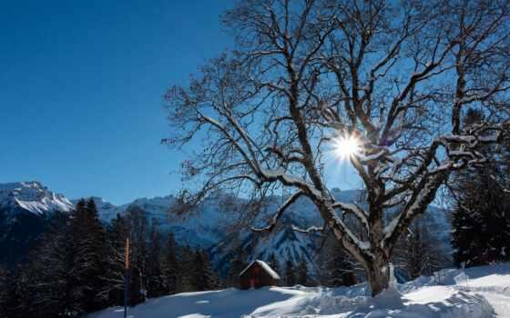снег, свет, white, braunwald, ray, гора, winter, утро, альпы