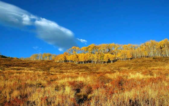 desktop, картинку, картинка, обоями, размере, осень, природы, tapety, paisajes, природой, просмотреть, реальном, otoño, jesień,