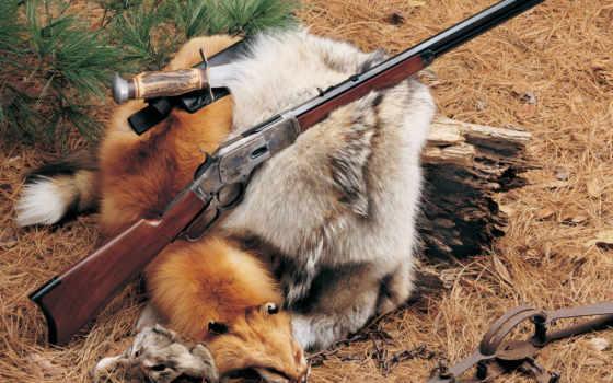 оружие, дикого, запада