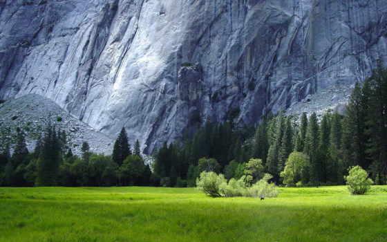горы, величественные, park, national, discover, ночь, лес, мар, winter, yosemite, кб,
