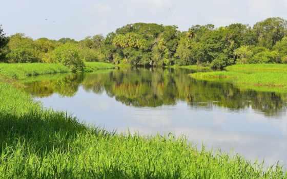 природа, река, summer, красиво, рыбалка, зеркало, летом, лес,