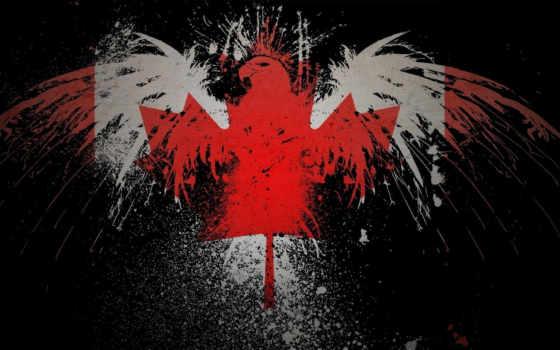 канада, флаг, орлан, случайные, images,