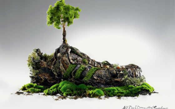 камнях, trees, растут, креативные, жителей, marketing, вопросы, краснодара, экосистема, everything, креатив,