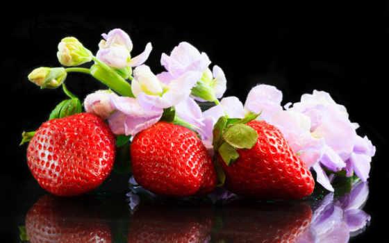 foto, mimosa, фото, клубника, erdbeere, strawberries, imagen, acerca, con